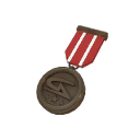 Quality 6 Gamers Assembly Bronze Medal (8587)