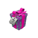 What's in the Companion Square Box?