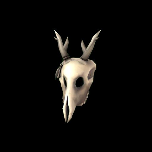 Shaman's Skull