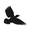 image for #TF_hw2013_the_caws_of_death