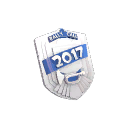 Rally Call 2017 Participant/Helper Medal