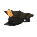 """Darren Willson's Confiscated police hat"""