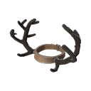 """The rich mans antlers."""