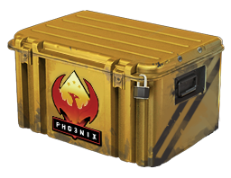 Open Phoenix Case case CS:GO