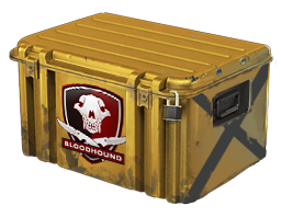Open Falchion Case case CS:GO
