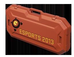eSports 2013 Case