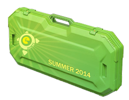 Open eSports Summer 2014 case CS:GO