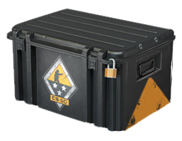 Open Weapon Case 3 case CS:GO