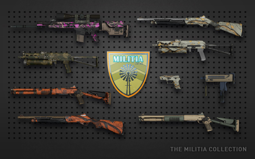 http://media.steampowered.com/apps/csgo/blog/images/armsdeal/slide_militia.jpg