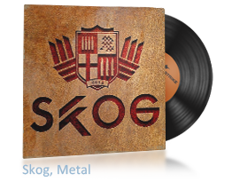 Урок агрессии от металлиста Skog.