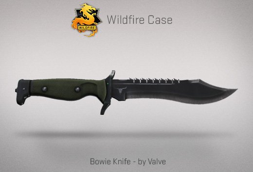 how to send a knife picture in csgo