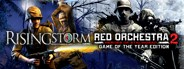 Rising Storm/Red Orchestra 2 Multiplayer