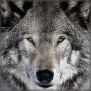 SiTWulf